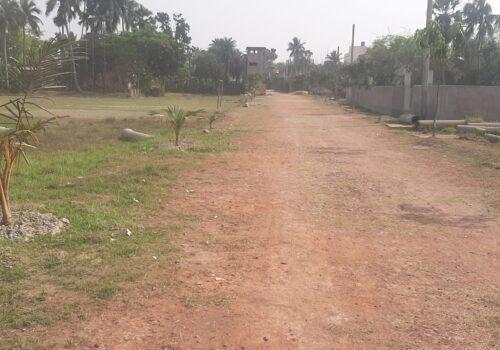 Road Developing